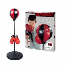 Punching Ball With Gloves