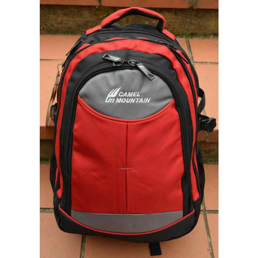 Camel Mountain Laptop Backpack In Stan