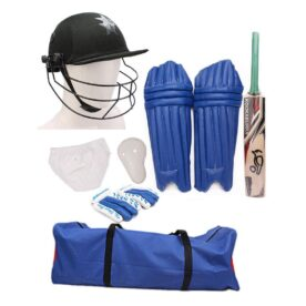 Cricket Starter Kit