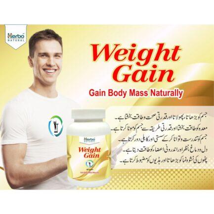 Herbo Natural Weight Gain Powder - 400g