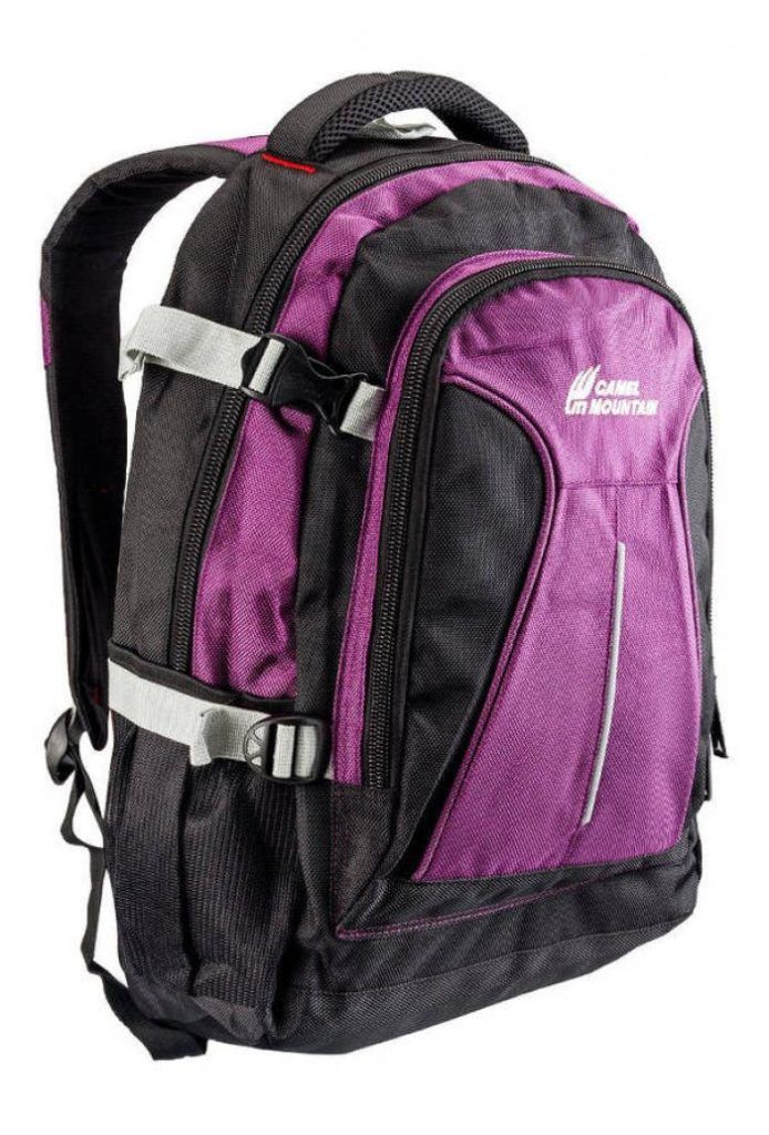 Camel Mountain Backpack Laptop Bags in Pakistan