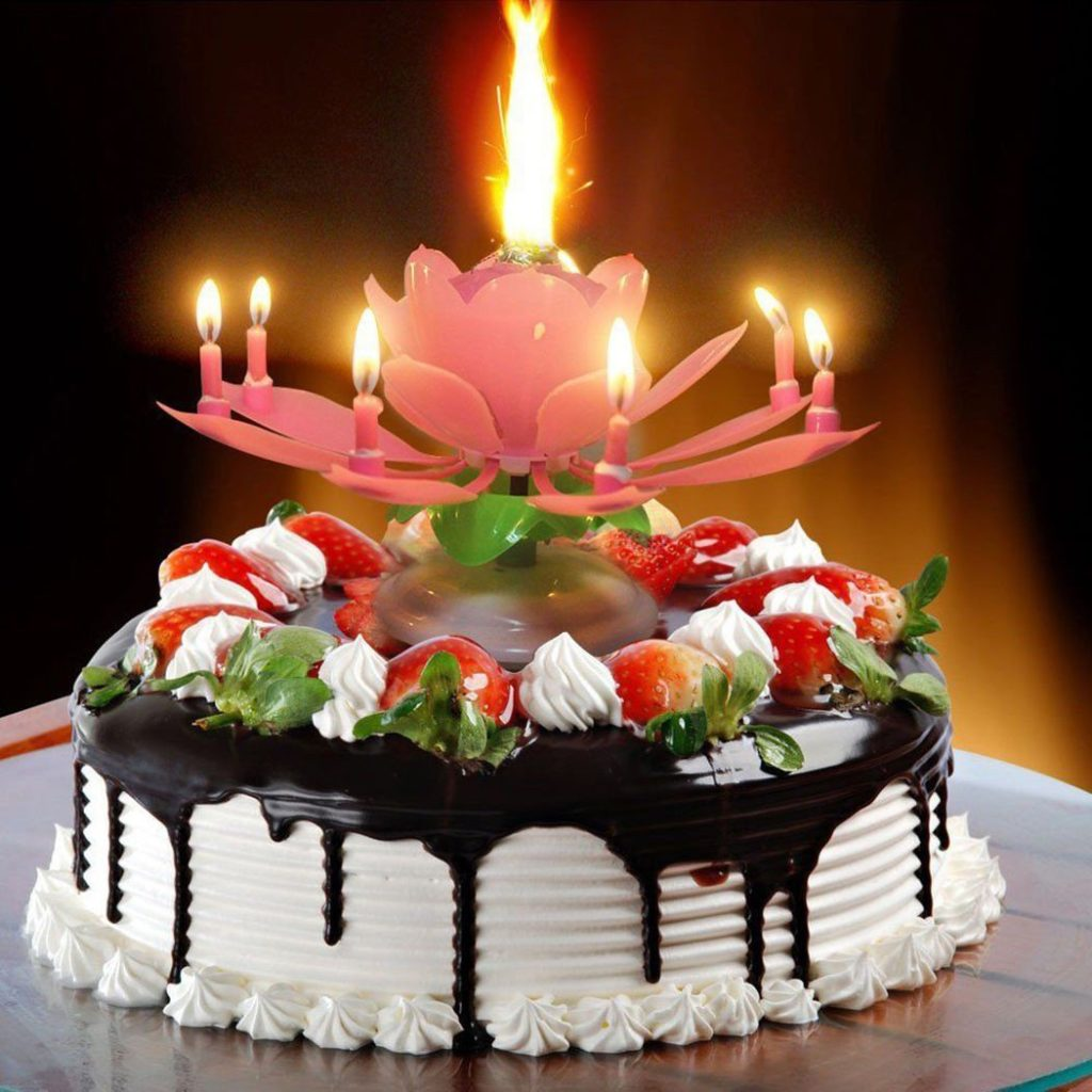 Lotus Flower Musical Birthday Candle Price In Pakistan