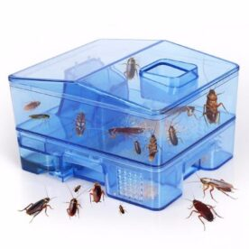 Reusable Plastic Cockroach Traps Box in Pakistan